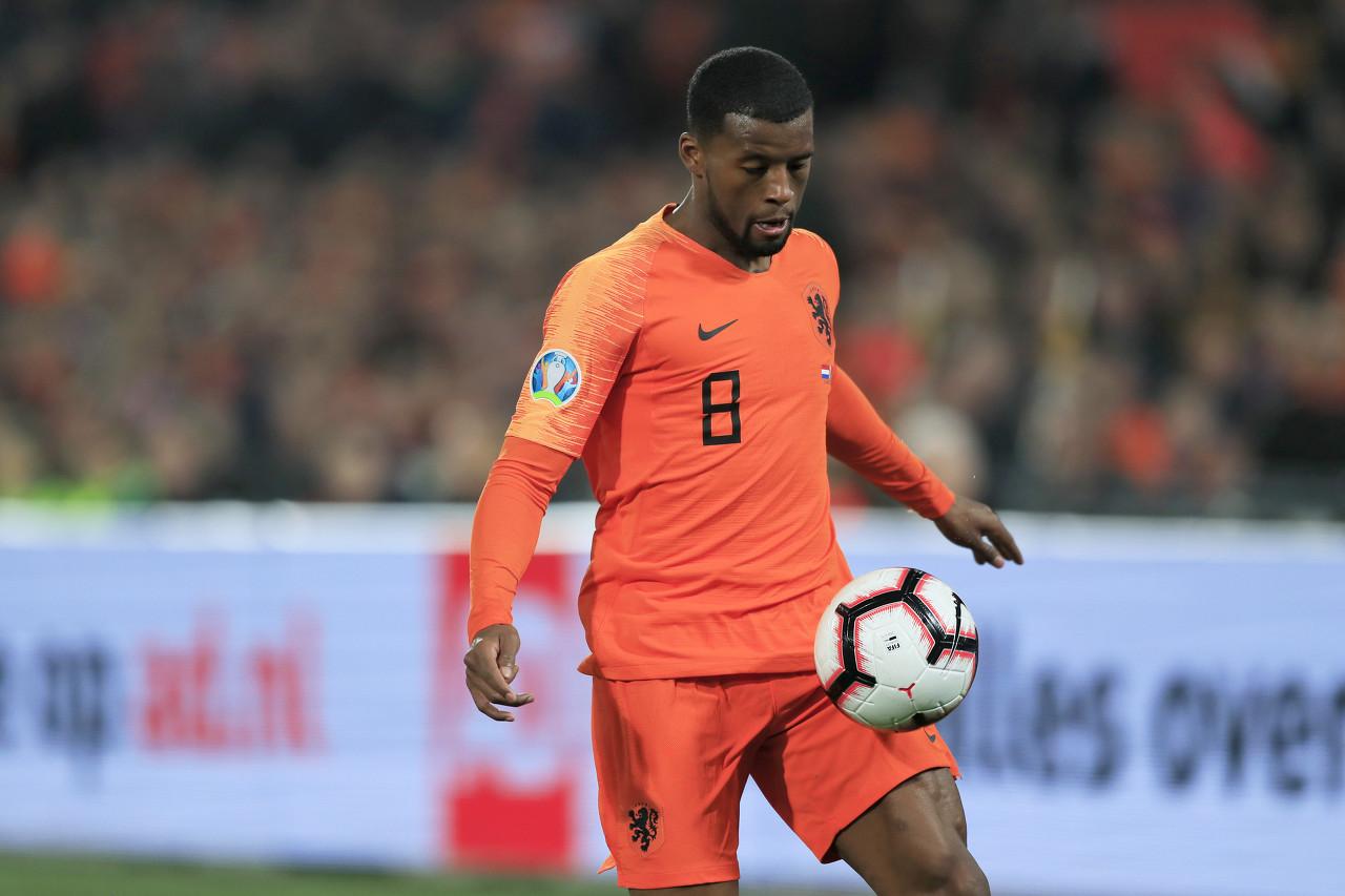 维纳尔杜姆:荷兰连续错过大赛让我心碎 首先要确保进入正赛