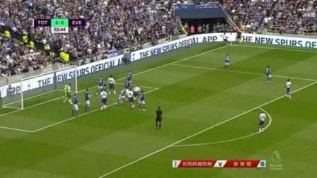 英超第38轮 热刺vs埃弗顿 进球视频